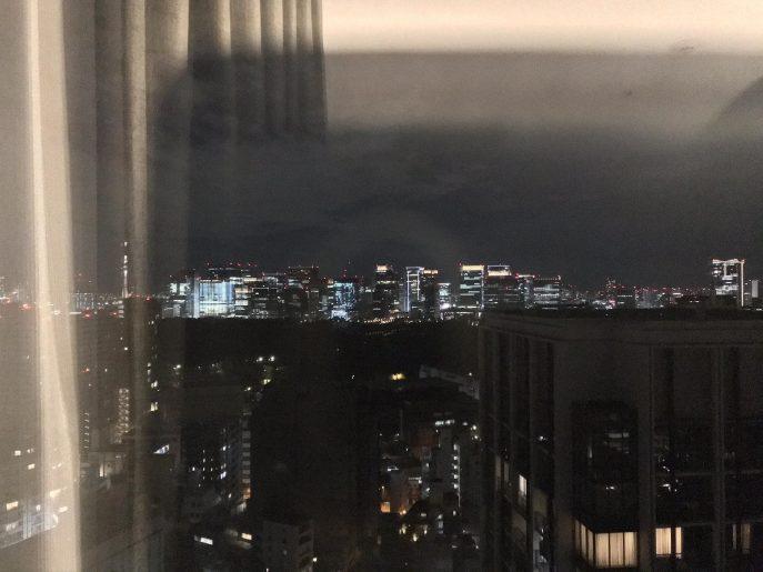 遠方に東京スカイツリー